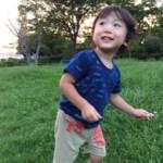 我孫子の名所 高野山桃山公園の詳細へ